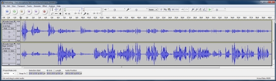 audacity donkey example - Podcasting - Twin microphone field recording techniques