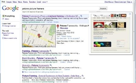 Google Instant Preview - Petone Frameworks screenshot